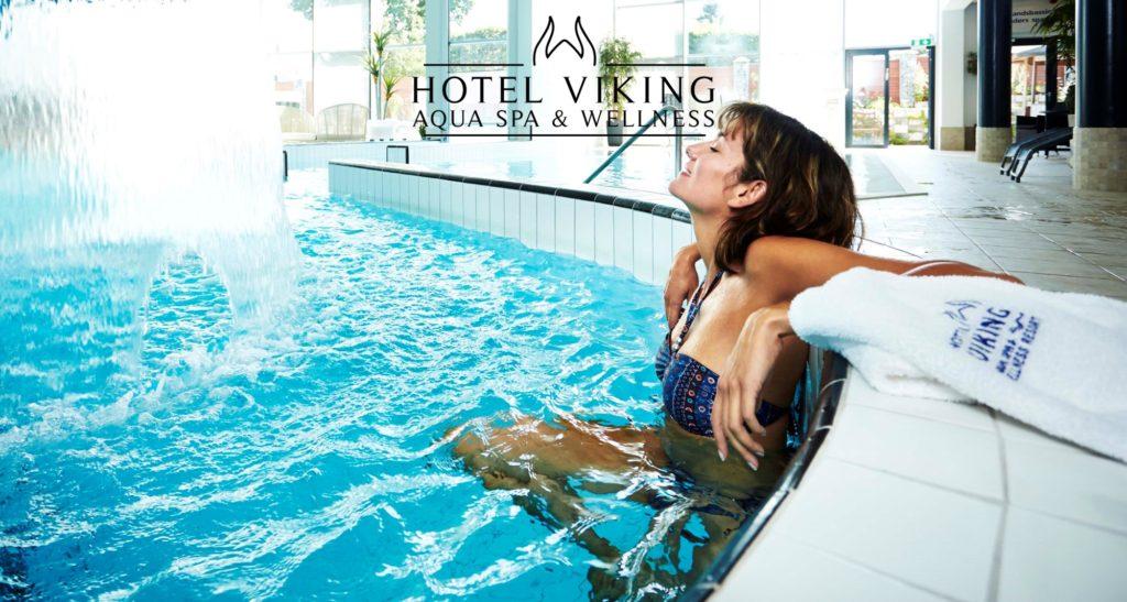 Hotel Viking_spakvinde-logo